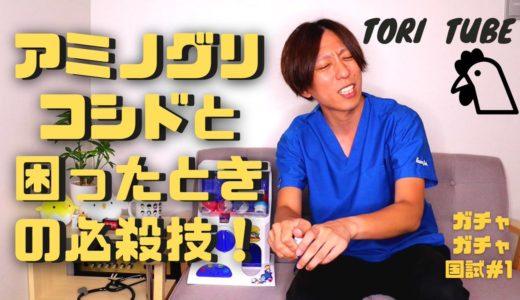 メディッコの鳥ボーイ『TORI TUBE』を開設!動画でも学べ!